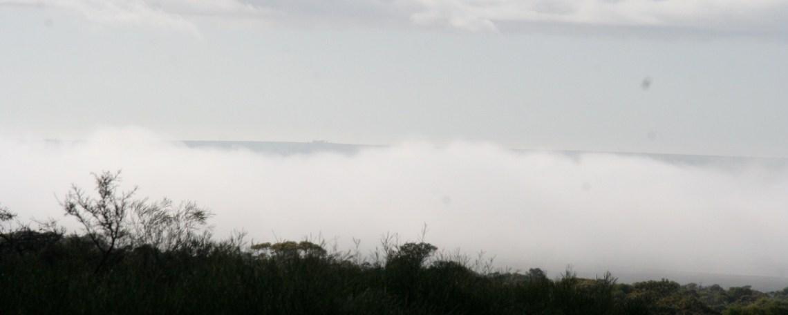 Fog outback WA2