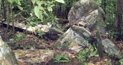 PNG crash