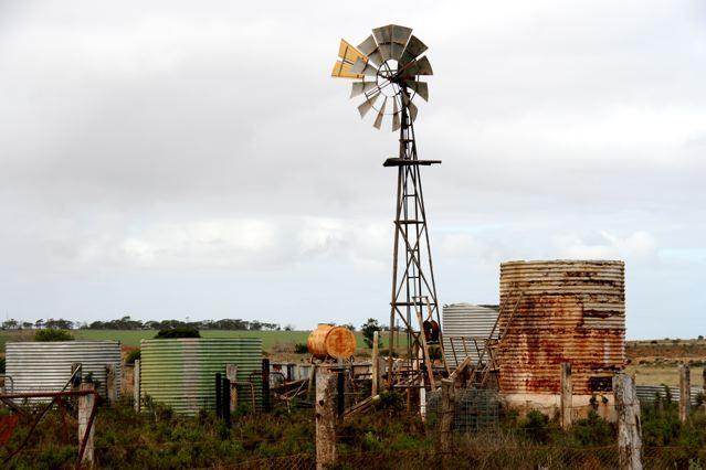Penong windmills 3