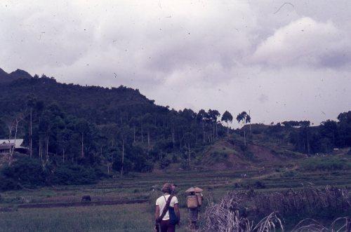 POH walking Toradja